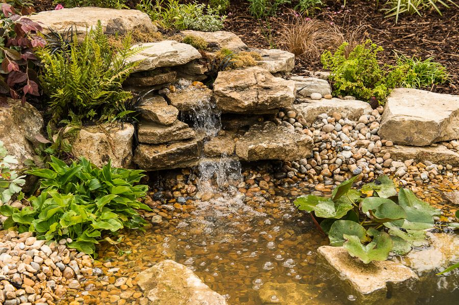 A Small Pond With Build In Gravel Bed Filtration And Waterfall In  Sandbanks, Poole