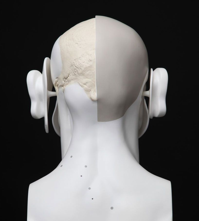 hyungkoo lee: face trace deconstructed anatomy sculptures | Anatomy ...