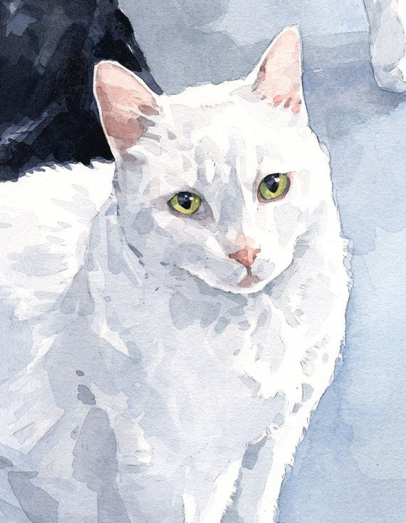 Custom Cat Portrait 8x10 pet watercolor painting