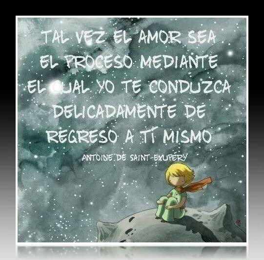 Educacion Little Prince Quotes Inspirational Quotes Motivation Prince Quotes