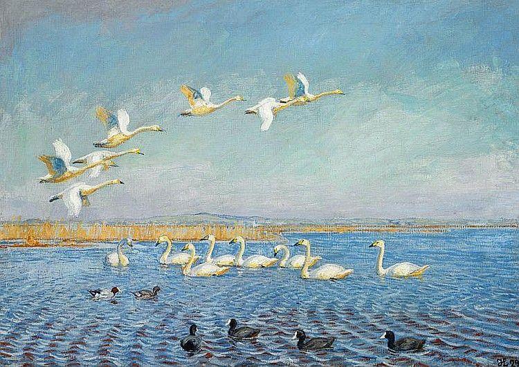 Johannes Larsen Singing Swans Coots And Ducks At Filso Johannes Art Artist