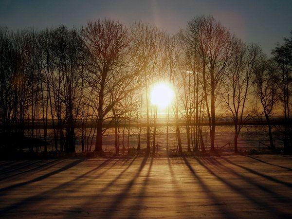 ¡Buenos días, soperas y soperos! 19-nov-2013 Autor: Showeme