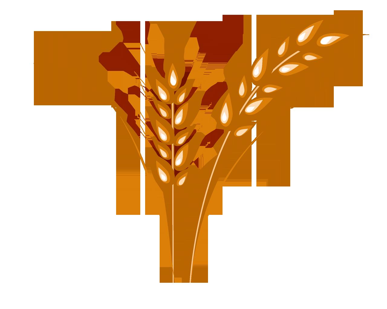 Рождением сына, пшеница картинки нарисованные