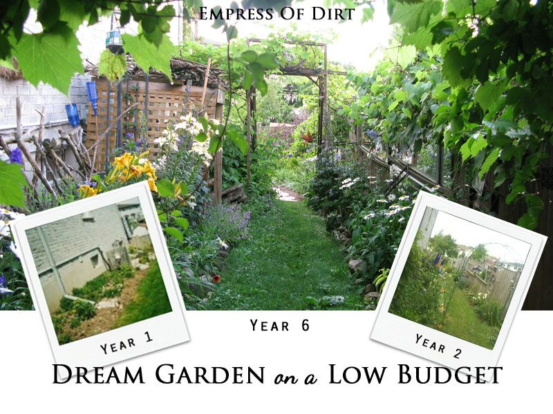 12 surprising tips create your dream garden on a low for Garden redesign on a budget