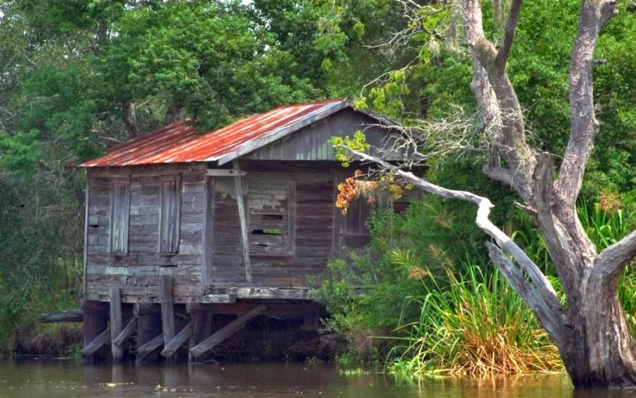 Shack In The Louisianna Swamps Pixdaus 1 Abandoned