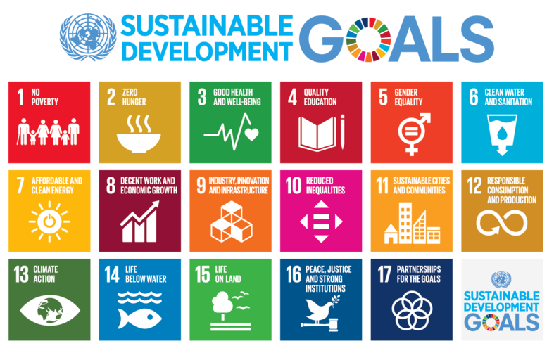 Sustainable Development Goals Wikipedia in 2020 Hoeden