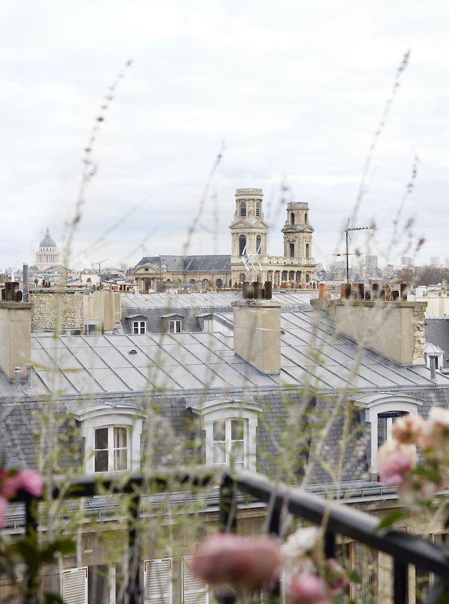 Paris Rooftops    Glamorous Paris Apartment In St.Germain
