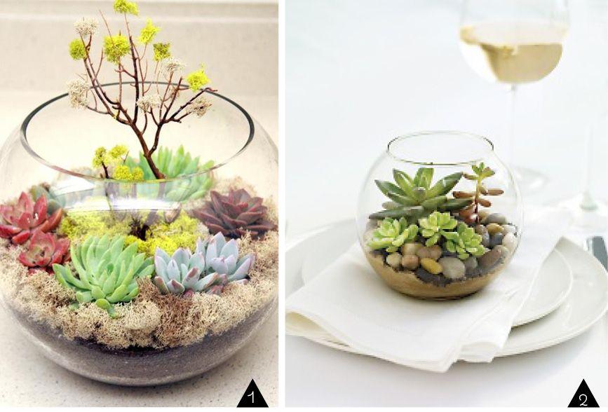 voici un kit terrarium tout y est pour faire un joli minijardin d. Black Bedroom Furniture Sets. Home Design Ideas