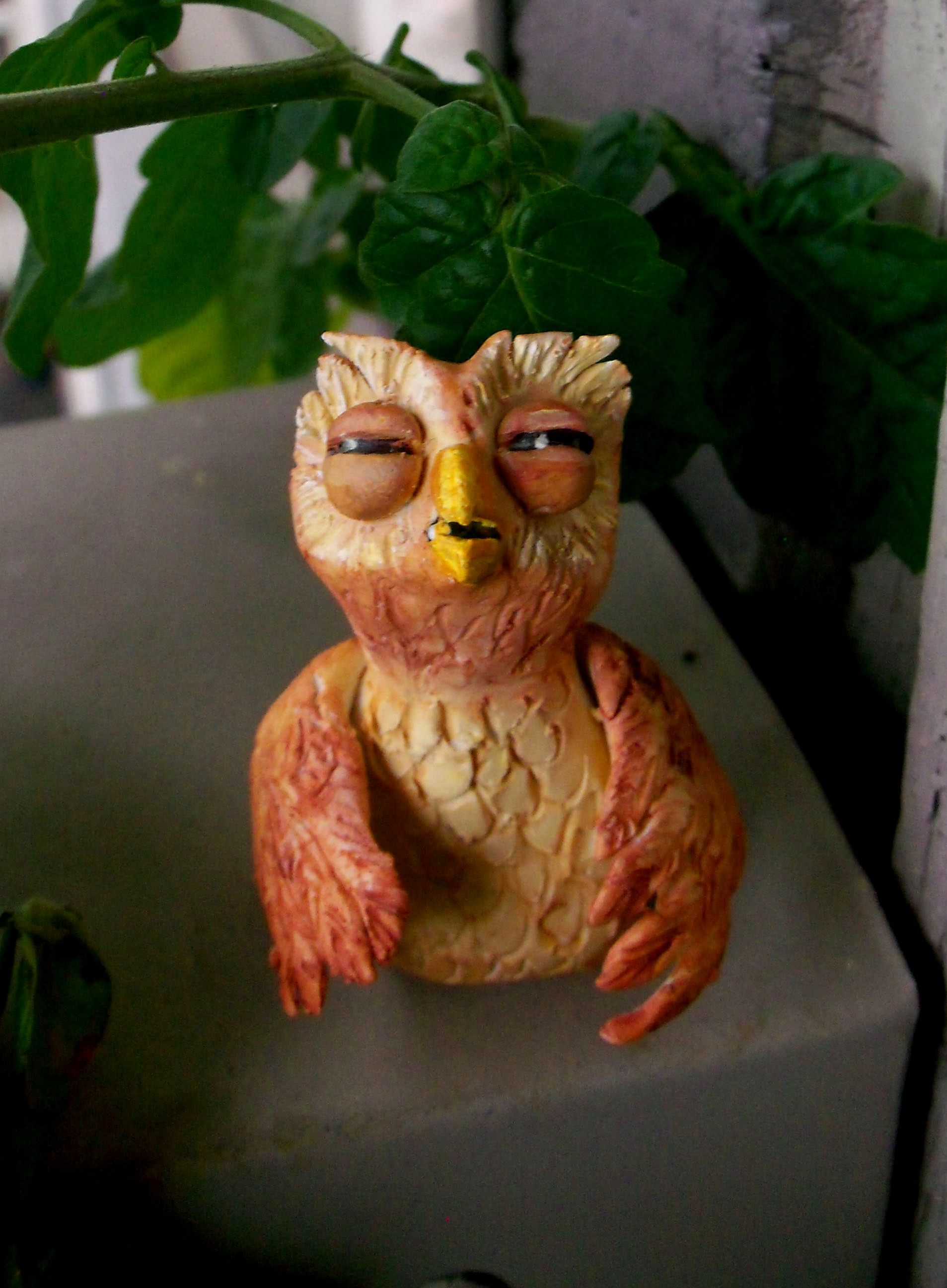This is just a little owl friend. I think he looks stoned.