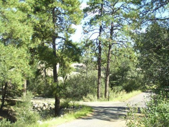 Yavapai Campground Az Pine Forest Main Attraction