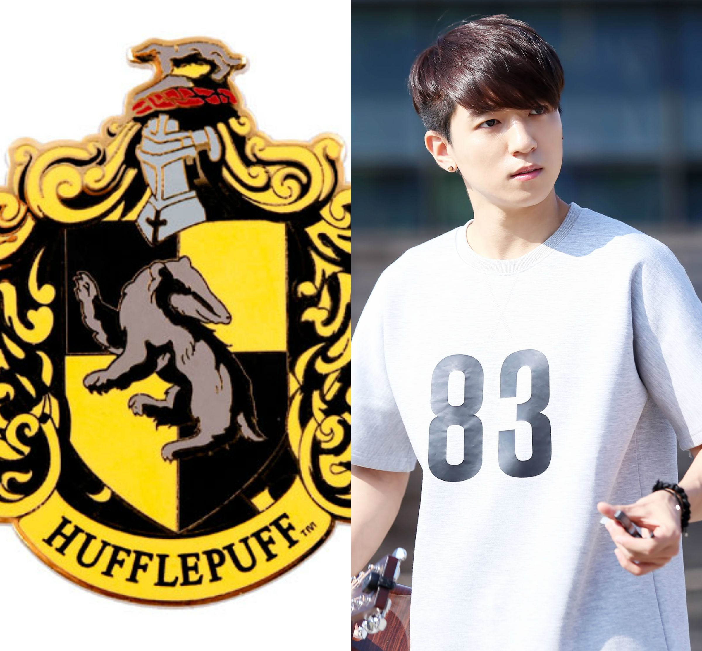 HP&KPOP // Hufflepuff // Sungjin of DAY6