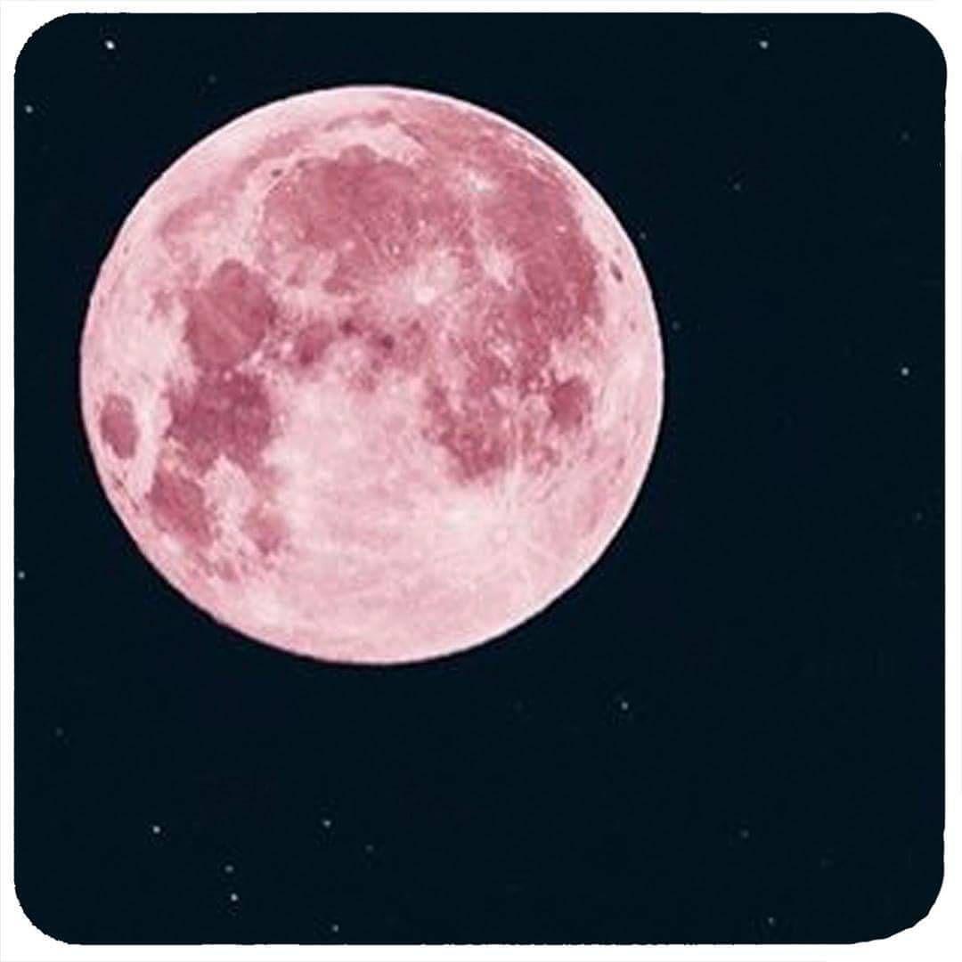 """87 Me gusta, 1 comentarios - Polín et moi (@polinetmoi) en Instagram: """"🌜Anoche la luna se vistió de primavera 🌼🌼🌼🌻🌻🌻🦋🦋🦋 #polinstyle #bepolin #primavera #spring #lunallena…"""""""