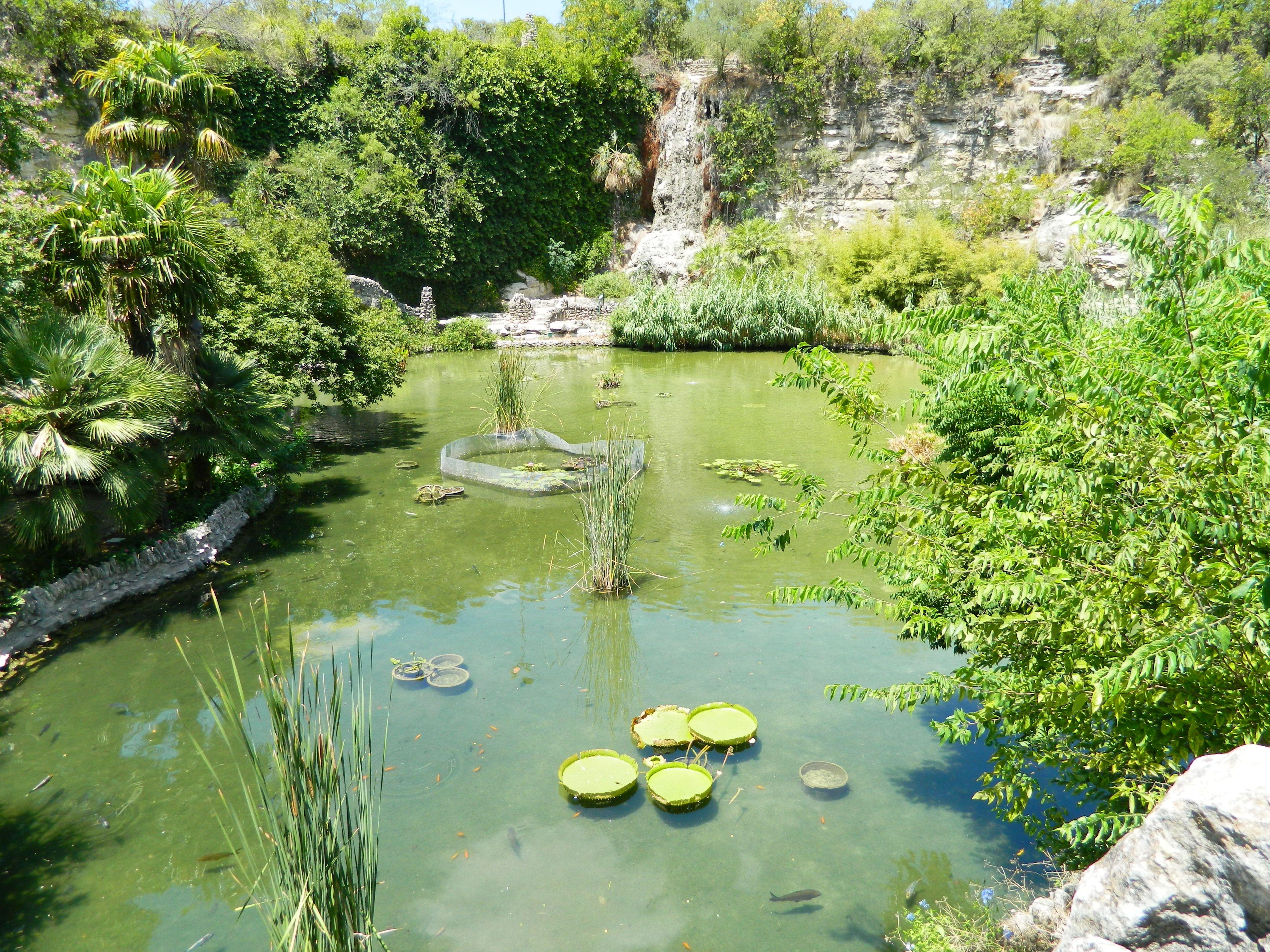 Japanese Tea Garden San Antonio, Tx Tea garden