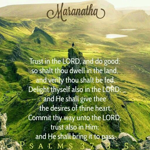 Psalms 37:3-9 (KJV) Trust in the LORD, and do good