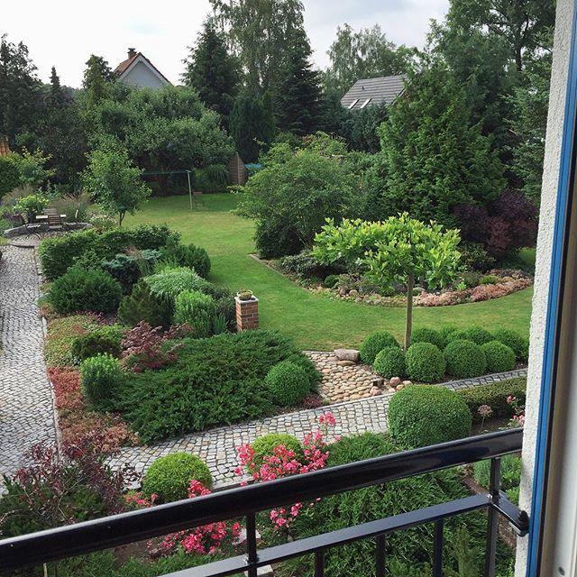 Guten Morgen Nach dem Dauerregen von gestern sieht der Garten jetzt
