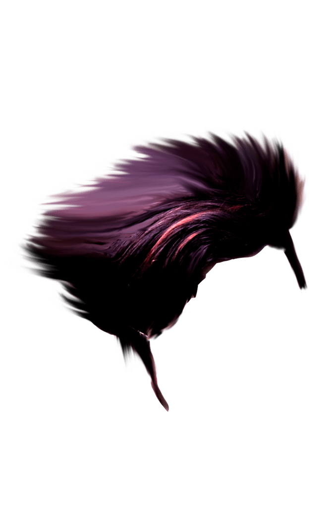 Cb Hair Png Hd Download Hair Png Photoshop Backgrounds Studio Background Images