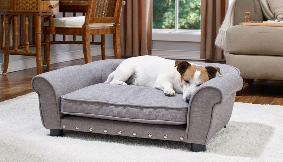 Editors Picks Dog Beds Pet Sofa Bed Dog Sofa Bed Dog Bed