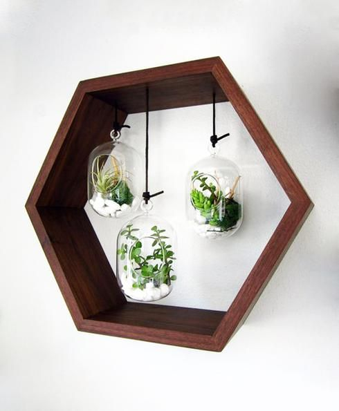 guide facile pour fabriquer ton propre terrarium in 2019. Black Bedroom Furniture Sets. Home Design Ideas