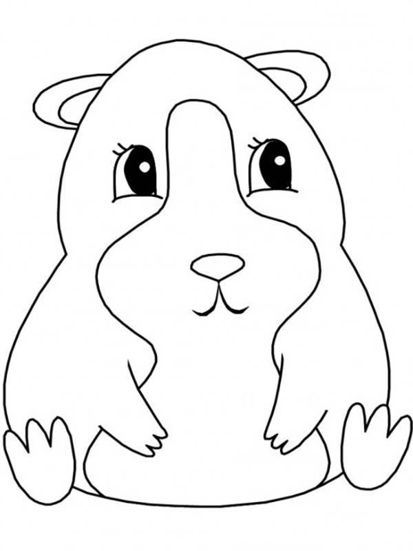Guinea Pig Sitting Coloring Page