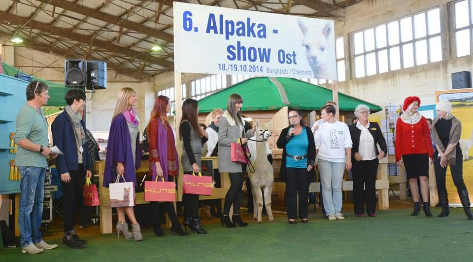 A German alpaca show!