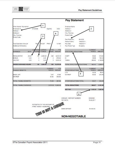Pay Statement Template 25 Great Pay Stub  Paycheck Stub Templates  Work  Pinterest .