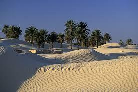 TÚNEZ DOUZ o la puerta del irresistible desierto El dromedario sigue siendo el protagonista absoluto del paisaje más grandioso y despiadado del planeta: el Gran Erg del Sáhara. Son caracteristicas sus Dunas y sus puestas de sol.