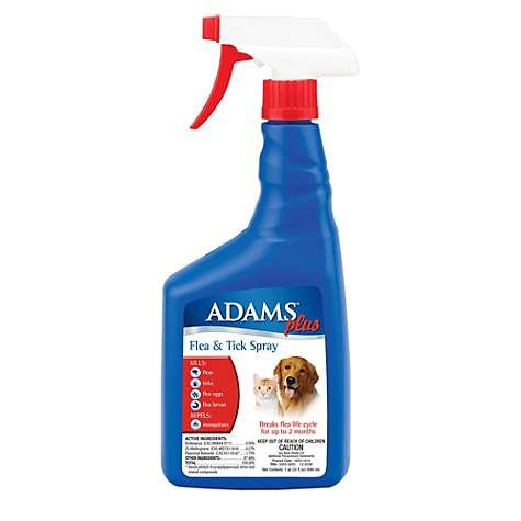 Adams Plus Flea And Tick Spray For Cats And Dogs 32 Oz Flea And Tick Spray Tick Spray Tick Spray For Dogs