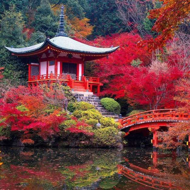Beautiful Places In Japan Tumblr: Japanese Temple...Kyoto, Japan