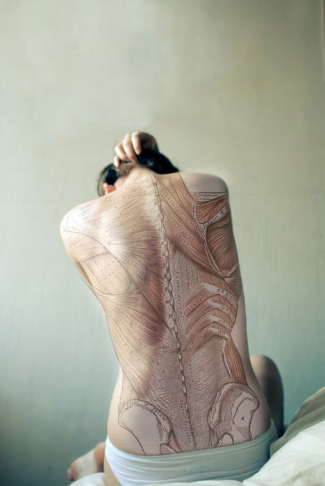 I have always loved anatomical works of art- ones on humans are no exception! This is fantastic (and also probably a little painful)!
