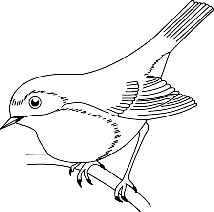 hokie bird coloring pages - photo#48