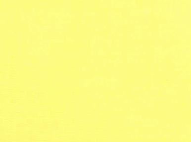 Michael Miller Cotton Couture Lemon