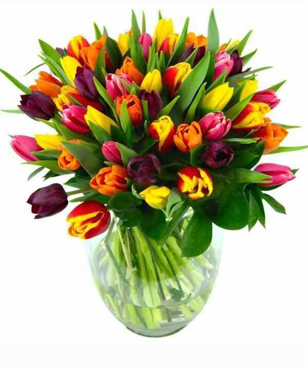 Pin By Silvia Soto On Flowers Flores Fresh Flower Bouquets Flowers Delivered Flower Delivery