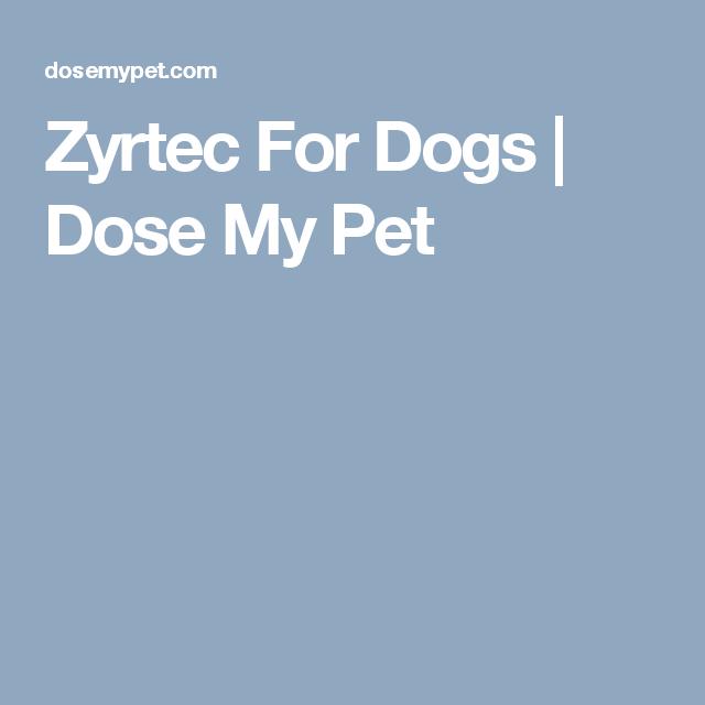 Dogs, Pets, Animals