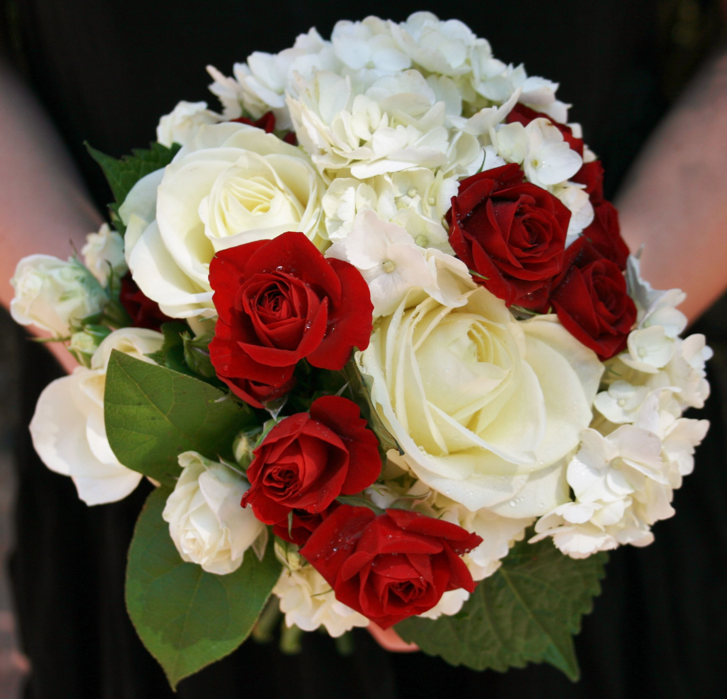 White Hydrangea Red White Spray Roses And Lemon Leaf Bridal Bouquet Designed By Nina Www Byreque White Spray Roses Red Rose Wedding White Hydrangea Bouquet