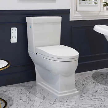 Irenne Classic Smart Bidet Toilet By Ove In 2020 Toilet