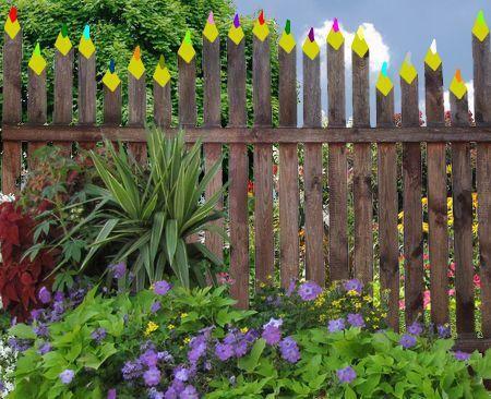 Des idées de décoration du jardin bio avec de la récup\' | jardin ...