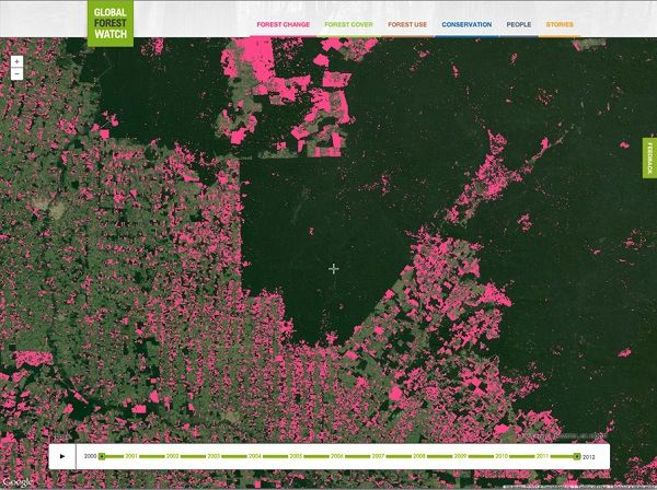 World's Deforestation Information with color representation - Google's Global Forest Watch