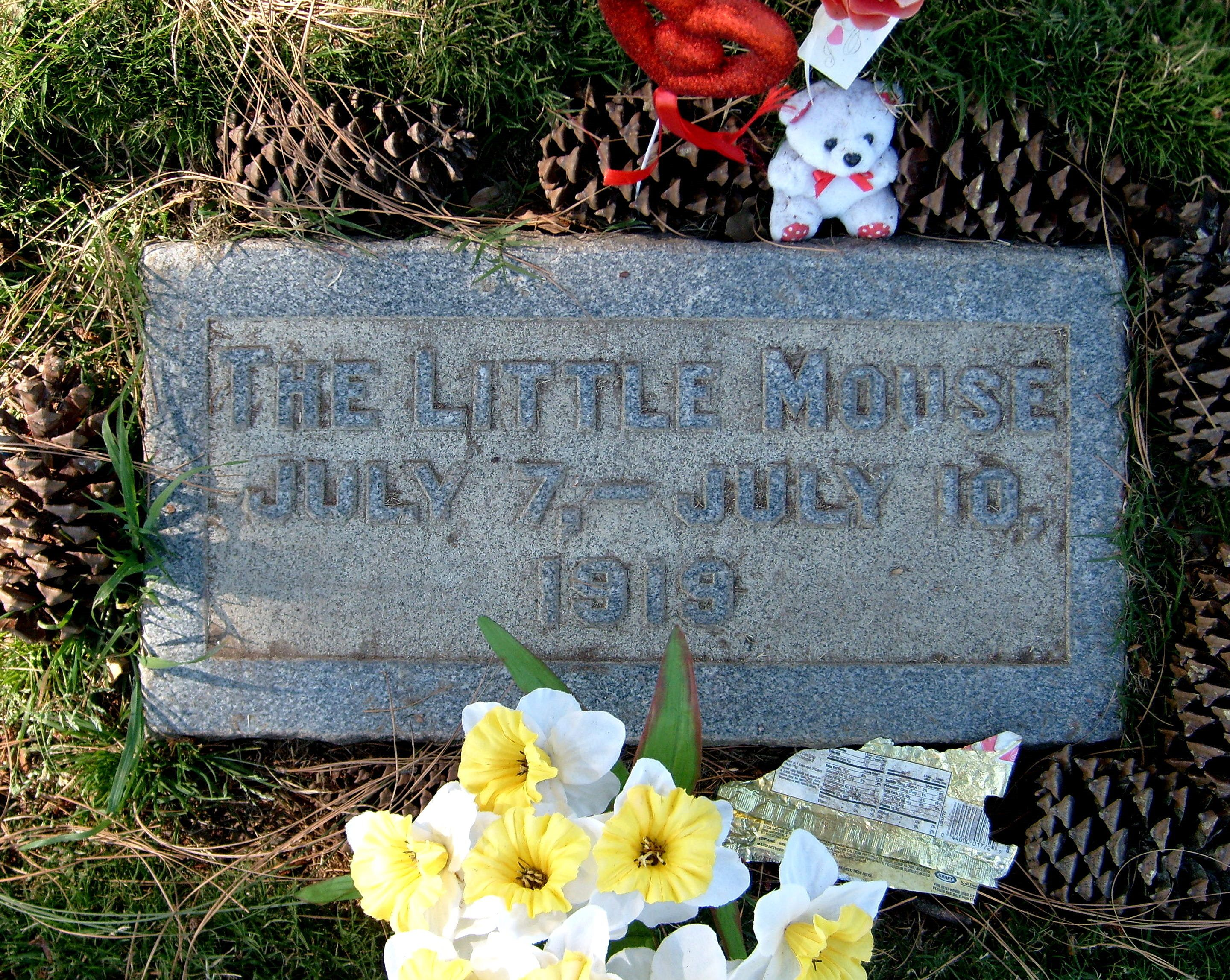 Norman Spencer Little Mouse Chaplin Famous Graves Grave Marker Old Cemeteries
