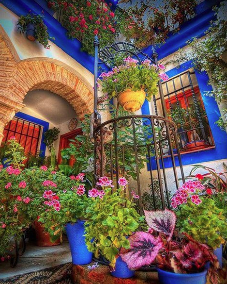 Cordoba, Spain. I want my home filled with AWESOME colors. Bright colors make me happy!
