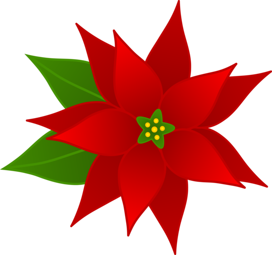 Free Clip Art Borders Poinsettia Christmas Poinsettia Flower Free Clip Art