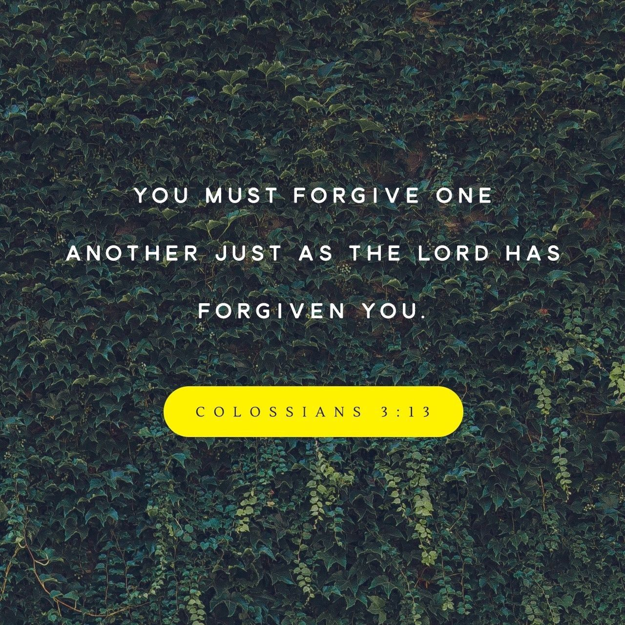 Image result for even as Christ forgave you so must you do
