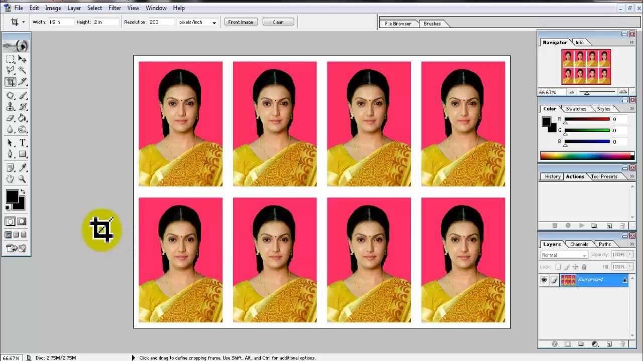 Create Passport Size Photo In Adobe Photoshop 7 0 Photoshop 7 Photoshop Youtube Adobe Photo