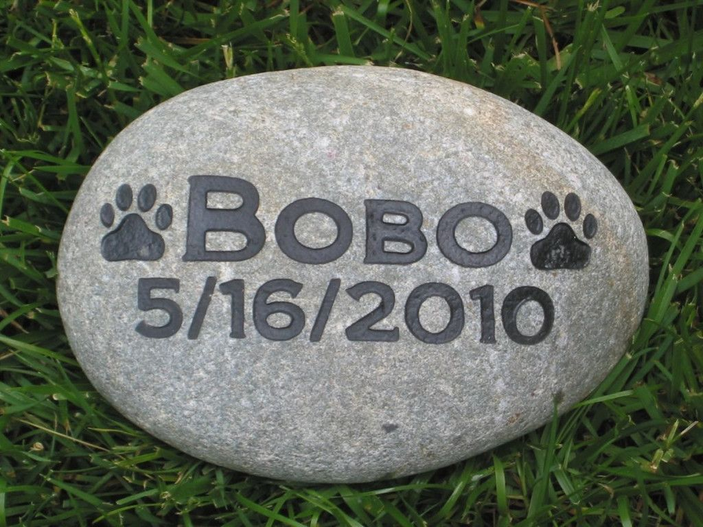 Garden Stones Engraved Personalized pet memorial stone 5 6 inch pet garden stone grave personalized pet memorial stone 5 6 inch pet garden stone grave marker memorial burial cemetery workwithnaturefo