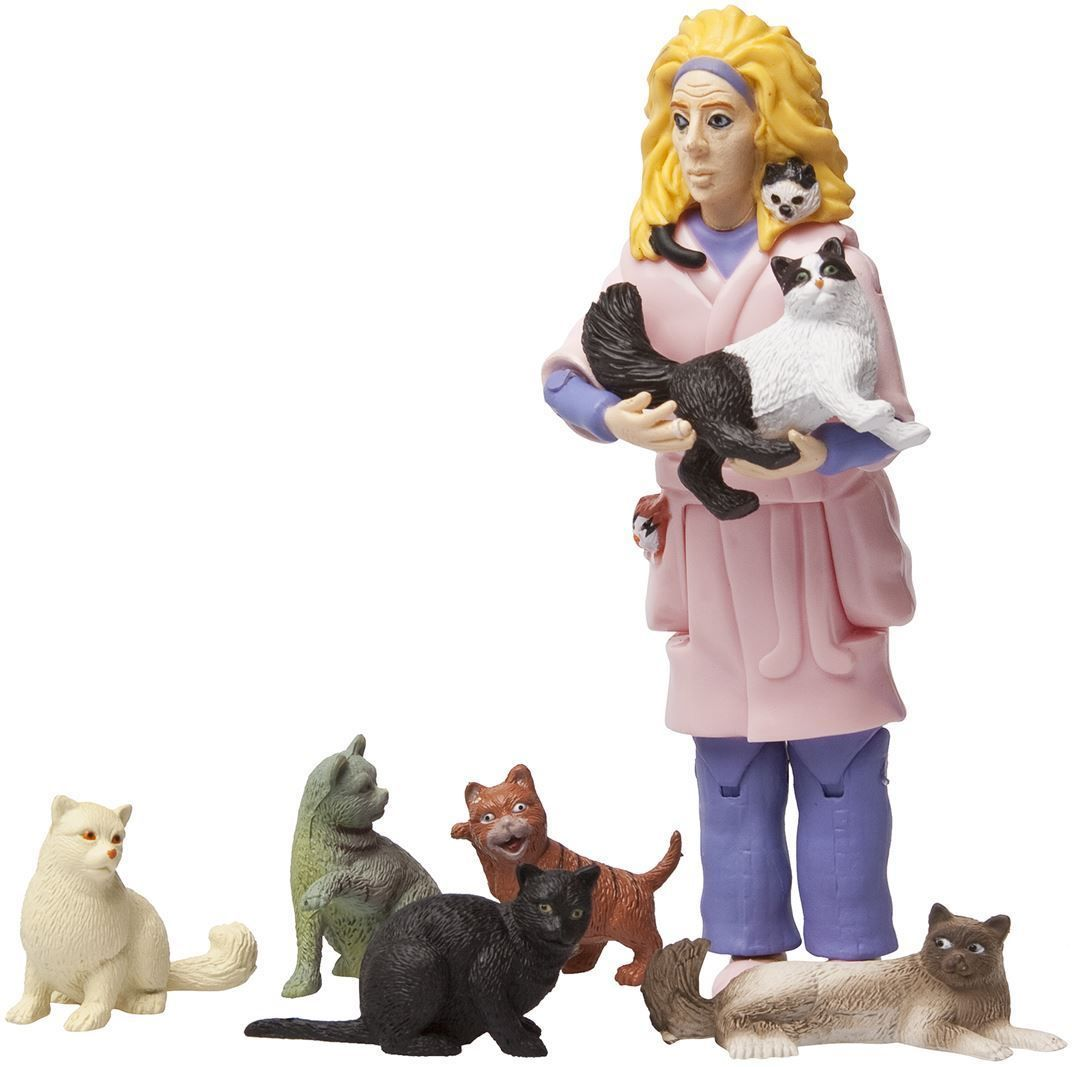 Crazy Cat Lady Action Figure With 6 Cats | eBay | Crazy cats