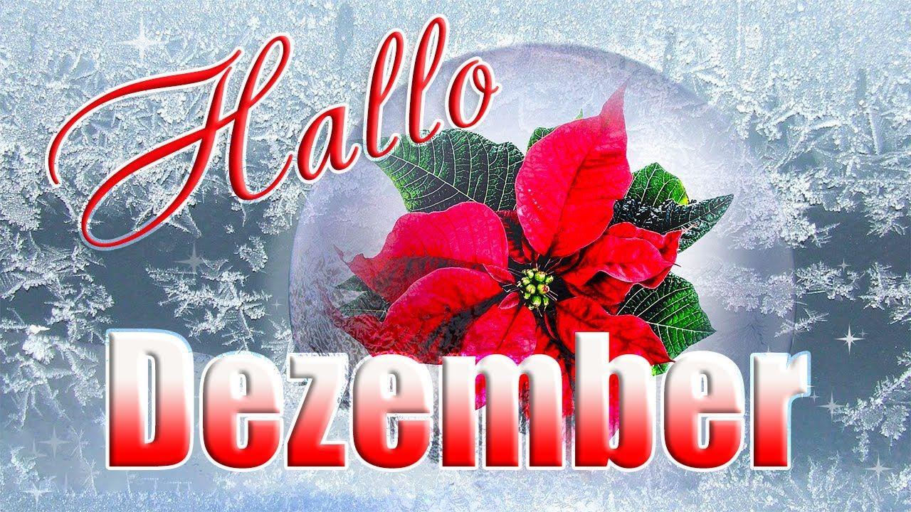 Hallo Dezember⛄ Dezember Grüße Frostige Wintergrüße für ...