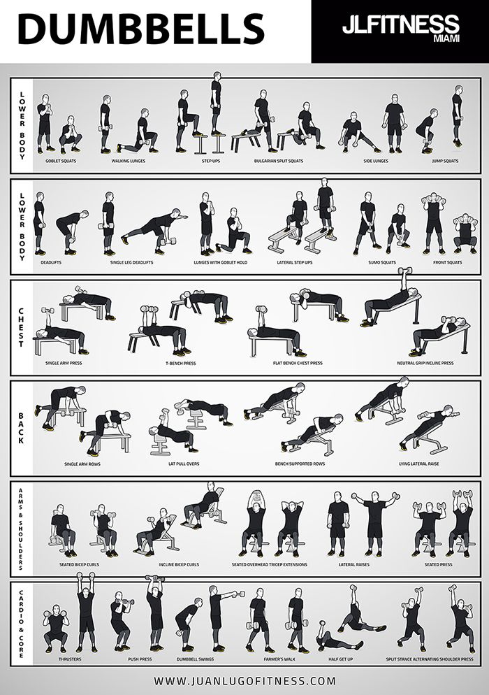 Dumbbell Training- 31 Illustrated Exercises Poster