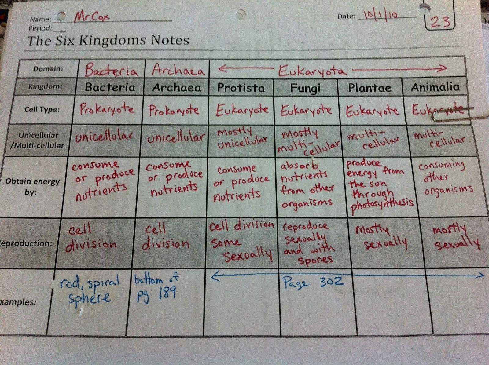 Garner 6th Grade Science Blog Six Kingdoms Foldable