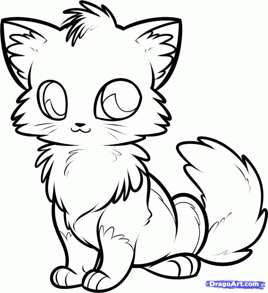 Pin By Pam Germany On Tekeningen Cute Fox Drawing Fox Coloring Page Cute Anime Cat