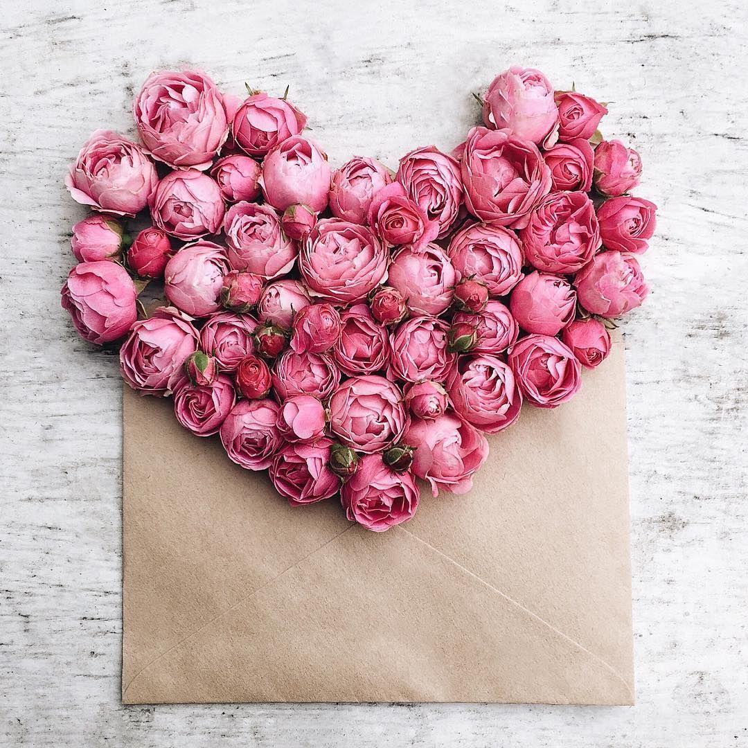 24 Beautiful Valentines Day Flowers Valentines Flowers Flowers