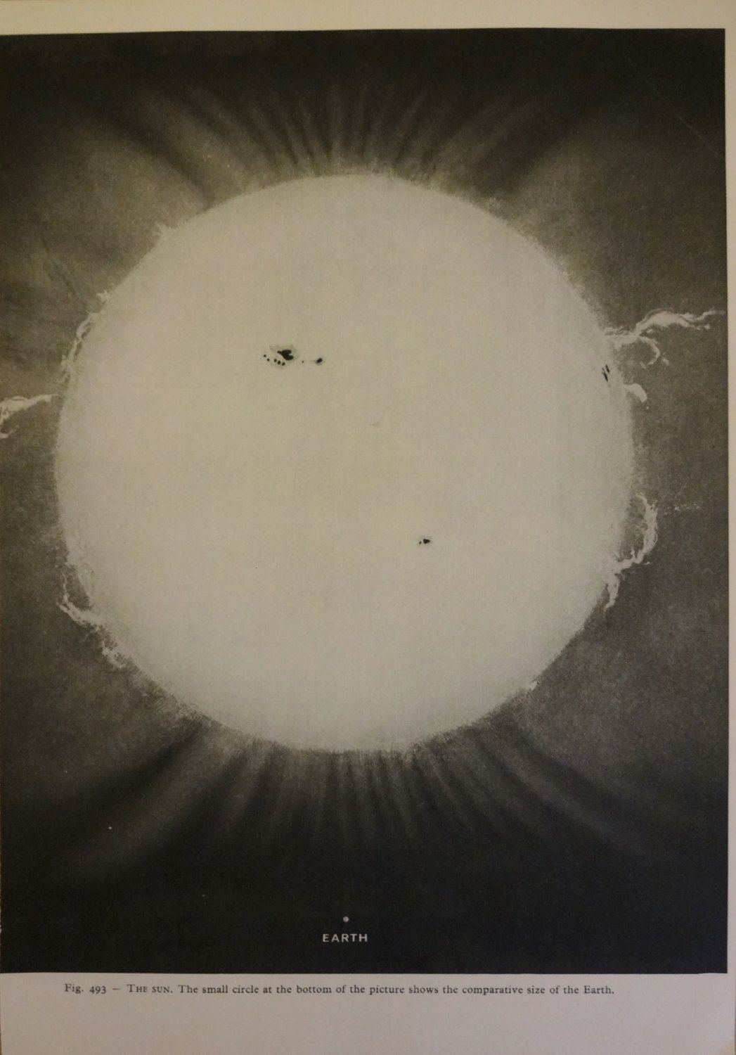 1950 S Original Sun Earth Vintage Astronomy Planet Astrology Print 10 00 Via Etsy Sun And Earth Space And Astronomy Astronomy